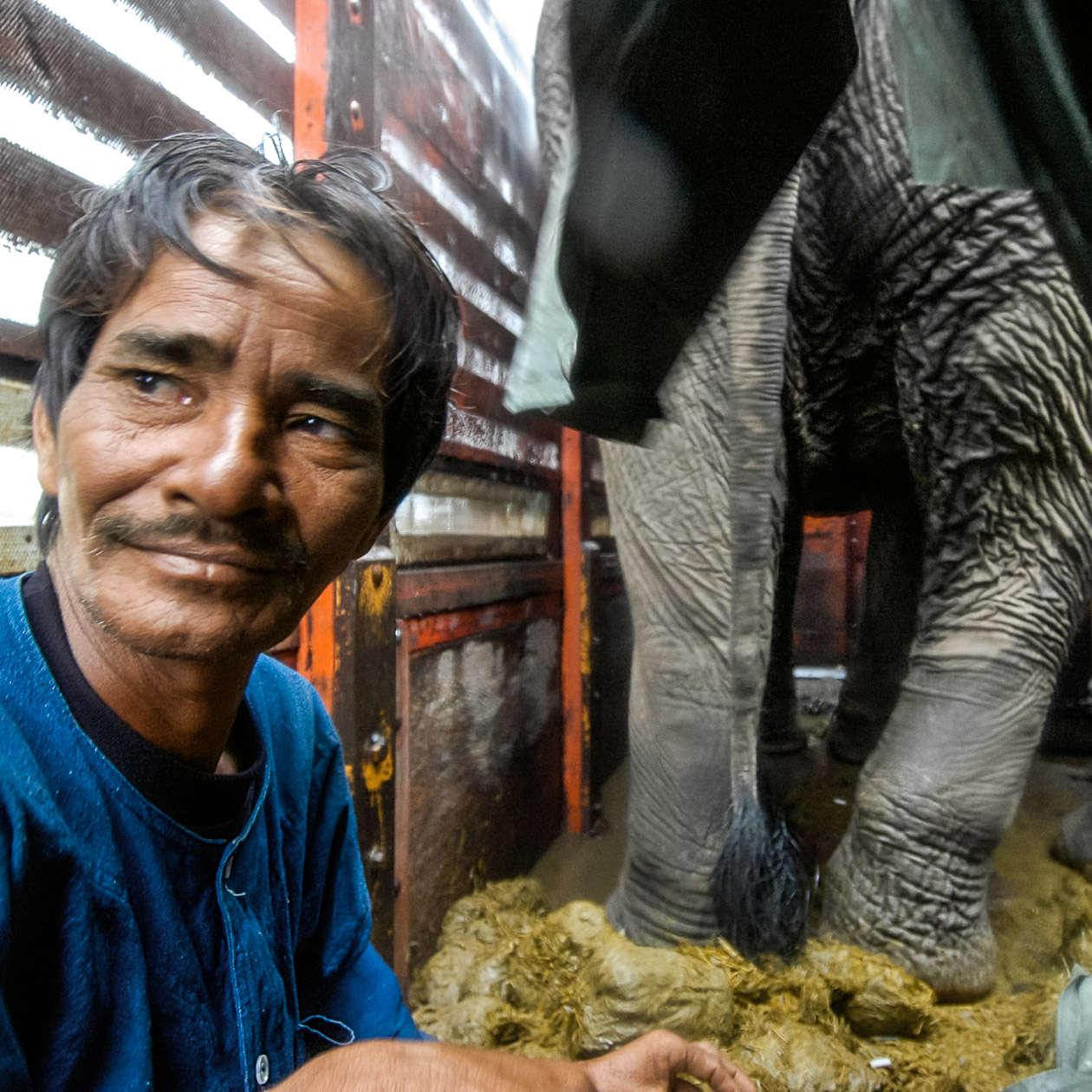 Elefantenpolo-14